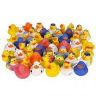 50 pc-Rubber Duck Assortment by Rhode Island Novelty